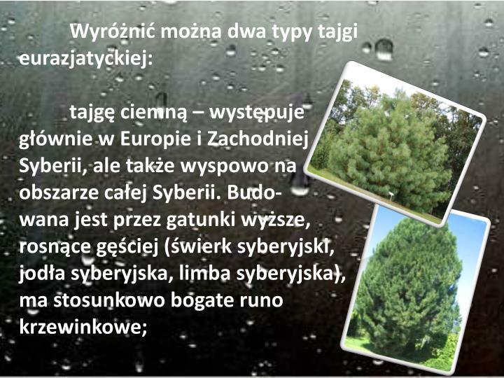 Wyróżnić można dwa typy tajgi eurazjatyckiej: