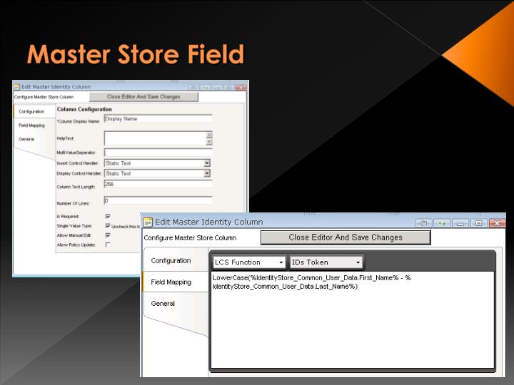 Master Store Field