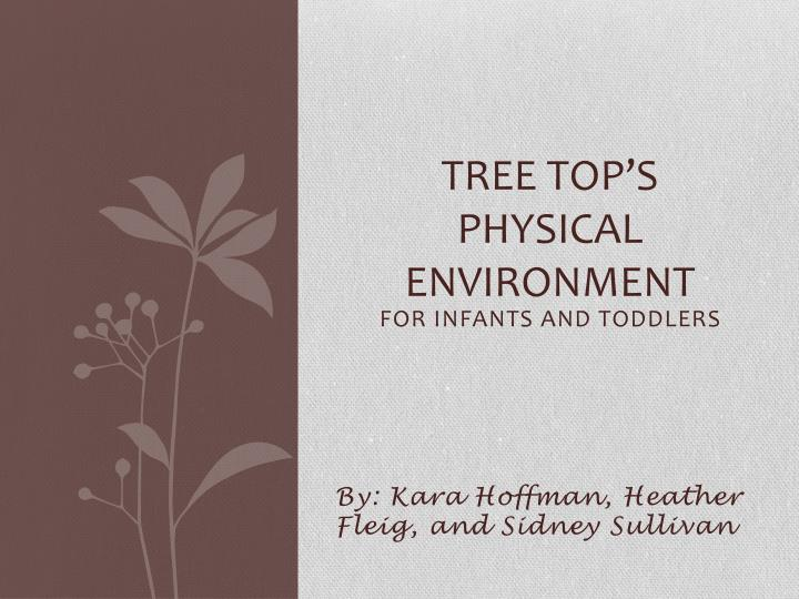 tree top s physical environment n.