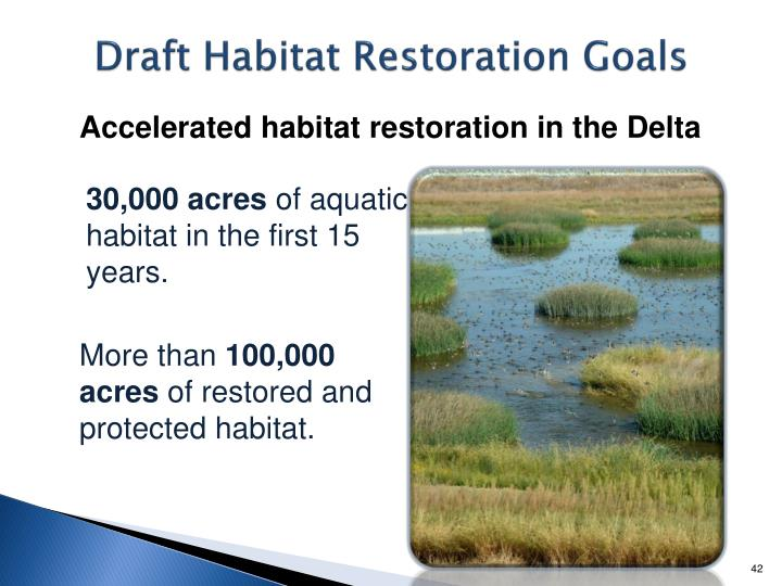Draft Habitat Restoration Goals