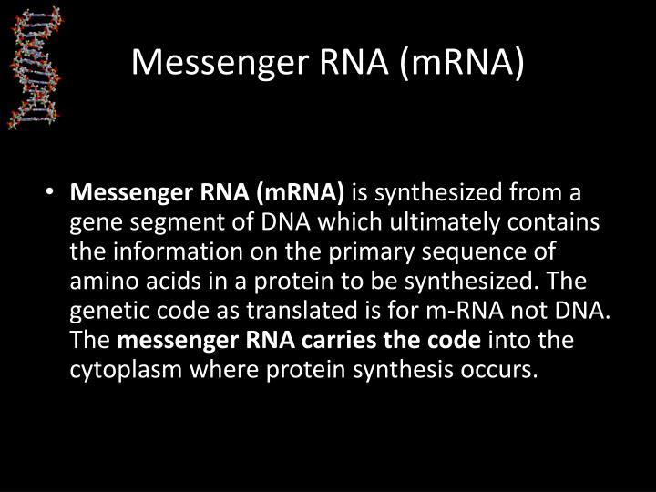 Messenger RNA (mRNA)