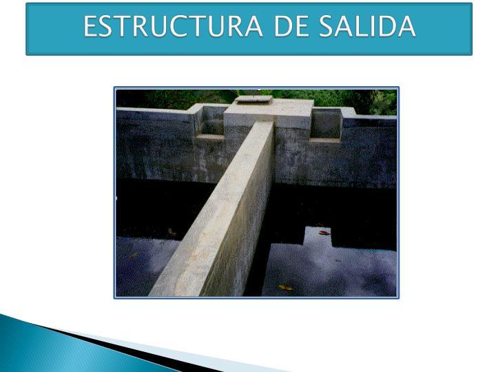 ESTRUCTURA DE SALIDA