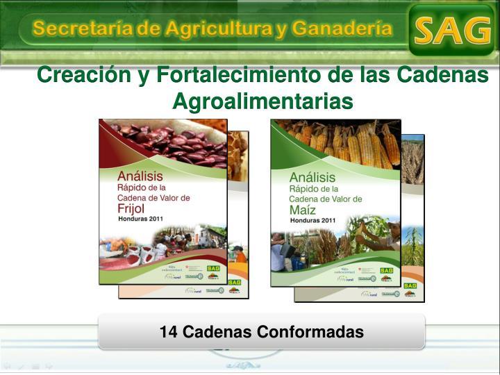 Creación y Fortalecimiento de las Cadenas Agroalimentarias