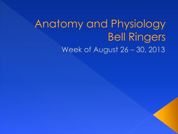 anatomy and physiology bell ringers n.