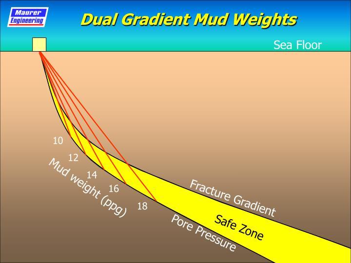 Dual Gradient Mud Weights