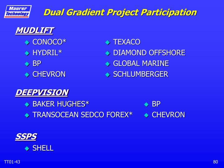 Dual Gradient Project Participation