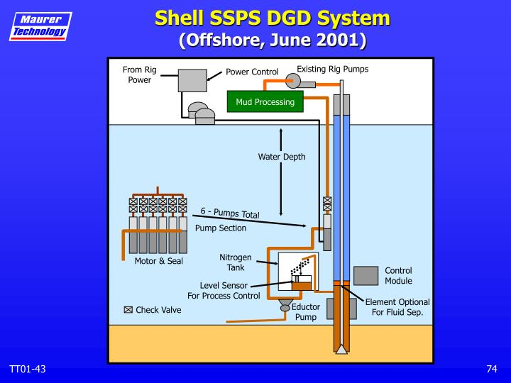 Shell SSPS DGD System