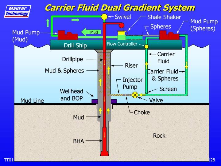 Carrier Fluid Dual Gradient System