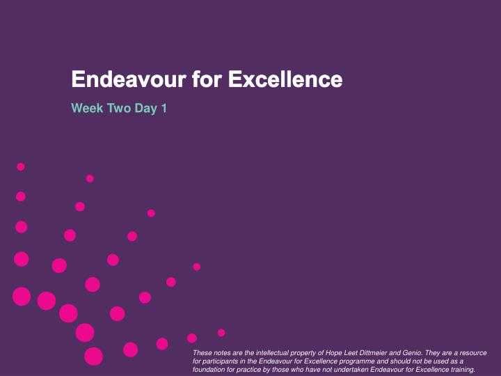 endeavour for excellence n.