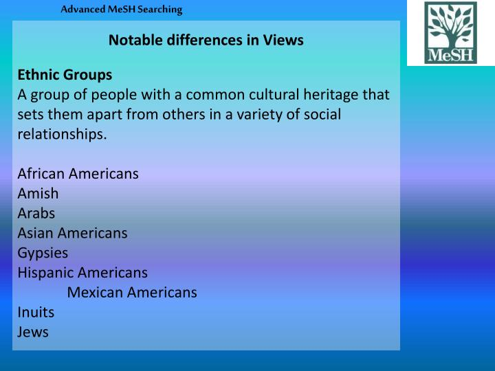Notable differences in Views
