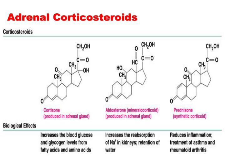 Adrenal Corticosteroids