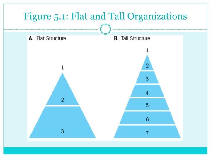 similarities and difference of tall and flat organisational structure Organizational structure & controls definitions: organizational structure – a firm's formal role configuration, procedures, governance, and control mechanisms, and authority and decision-making processes.