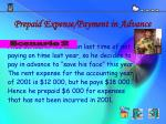 prepaid expense payment in advance1