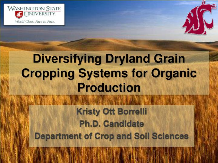 diversifying dryland grain cropping systems for organic production n.