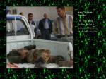 iraq civilian deaths