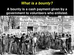 what is a bounty