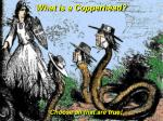 what is a copperhead