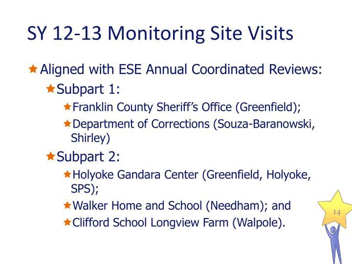 SY 12-13 Monitoring Site Visits
