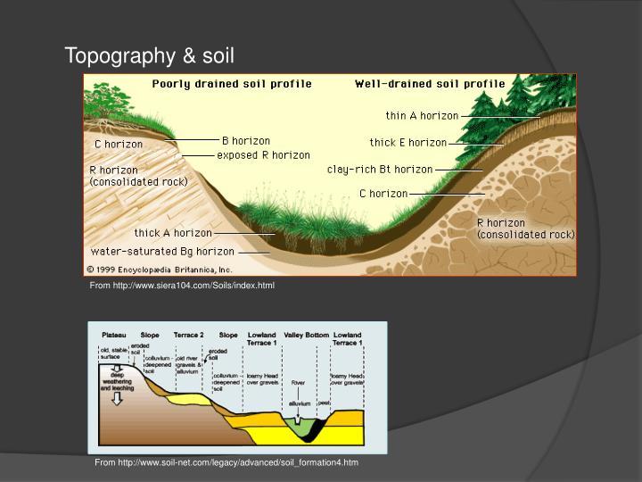Topography & soil