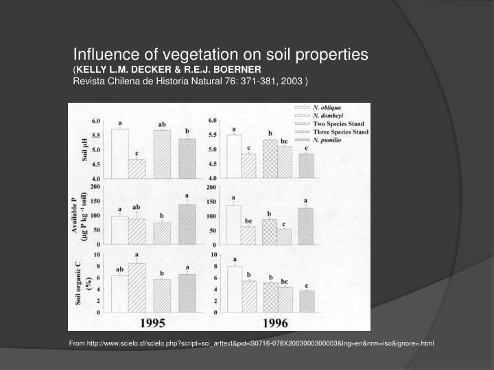 Influence of vegetation on soil properties