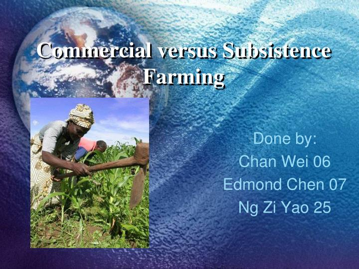 subsistence to commercial farming Subsistence and commercial farming are simply two systems that arose along with the evolution of farming there are several differences between the two different systems of farming.