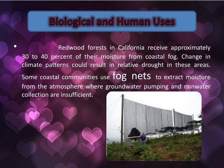 Biological and Human Uses