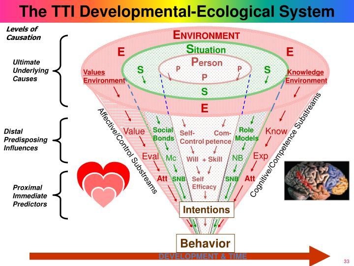 The TTI Developmental-Ecological System