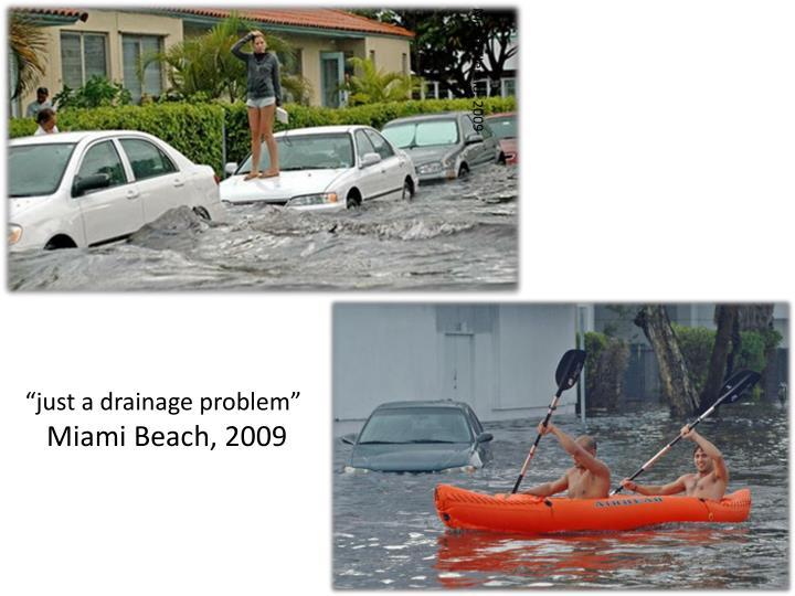 Miami Herald, 2009