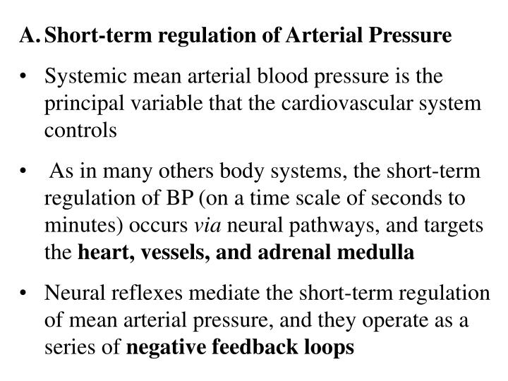 Short-term regulation of Arterial Pressure