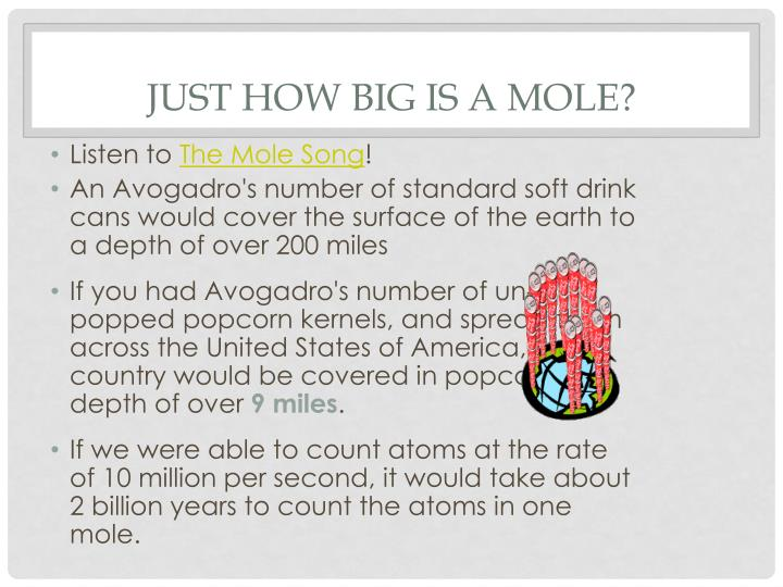 Just how big is a mole?