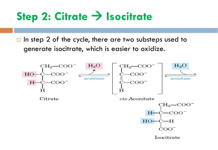 Step 2: Citrate