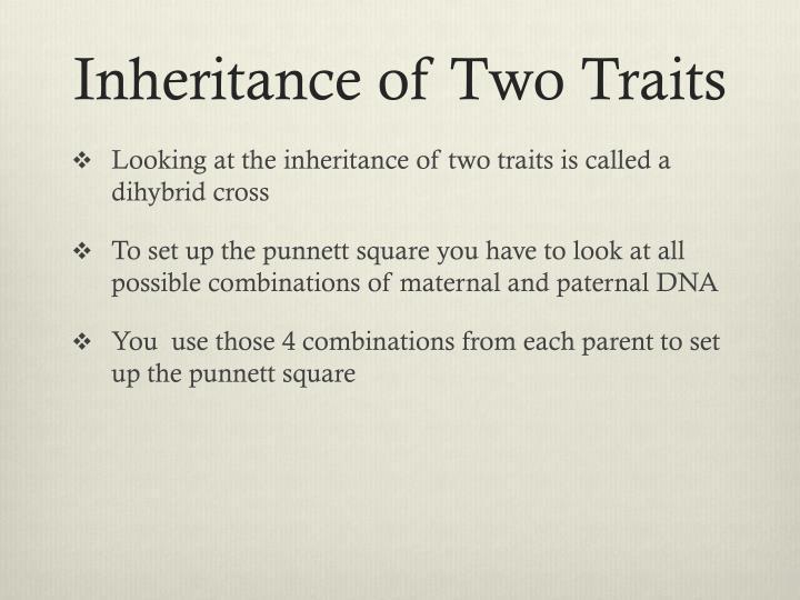 Inheritance of Two Traits