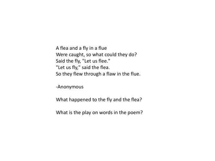 A flea and a fly in a flue