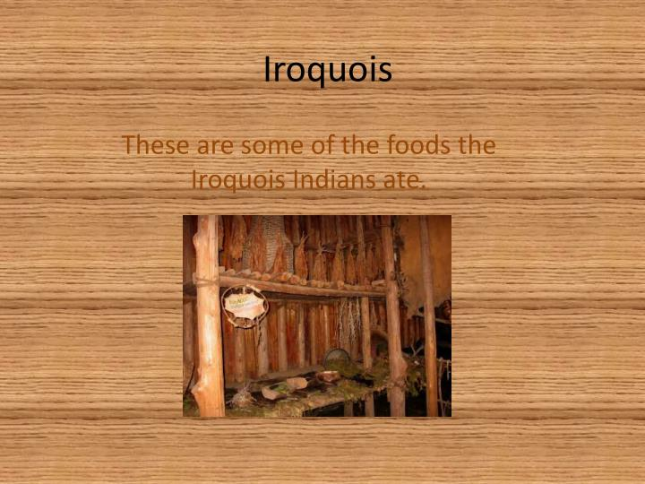 the iroquois constitution summary Constitution of the iroquois nations the great binding since you the lords of the five nations have refused to return to the procedure of the constitution.