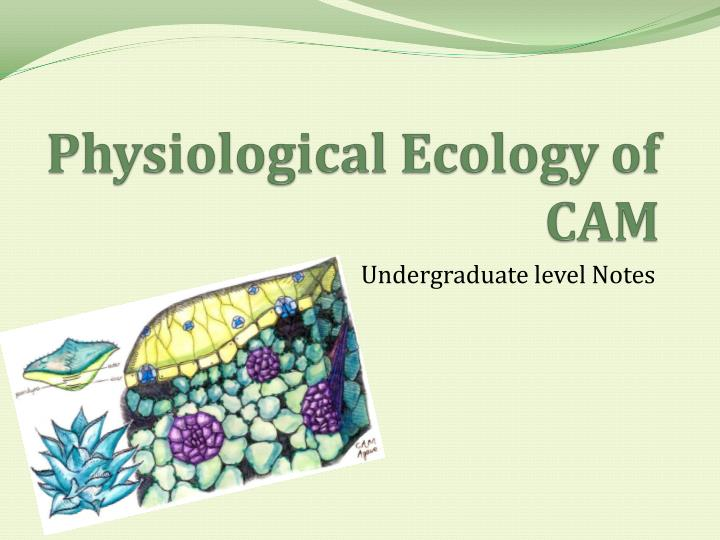 physiological ecology of cam n.