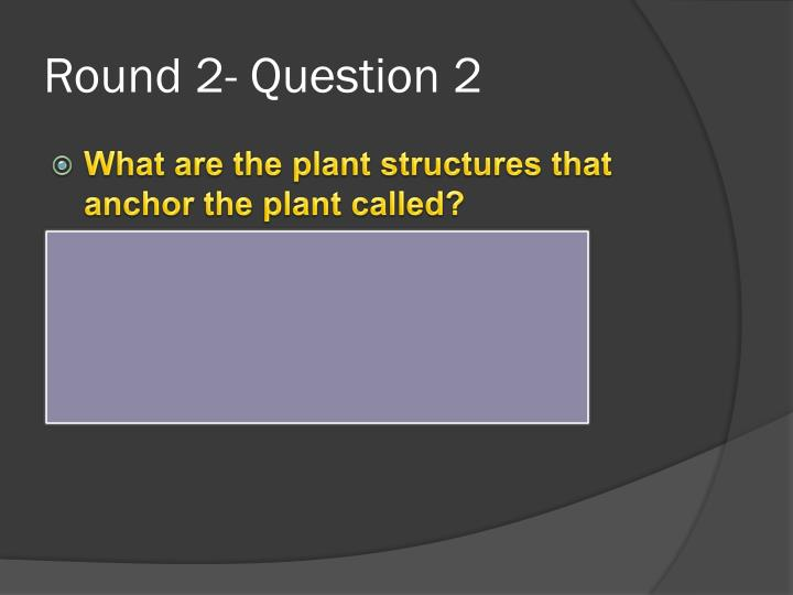 Round 2- Question