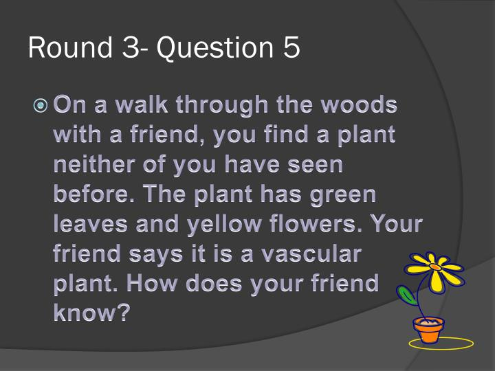 Round 3- Question 5