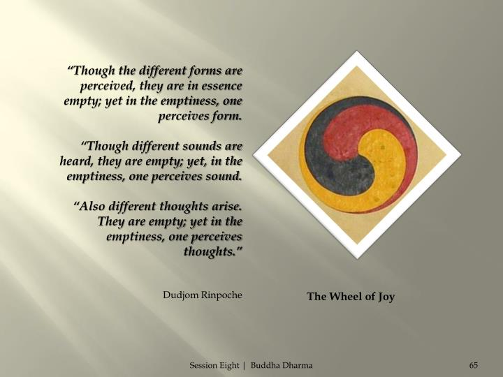 """Though the different forms are perceived, they are in essence empty; yet in the emptiness, one perceives form."