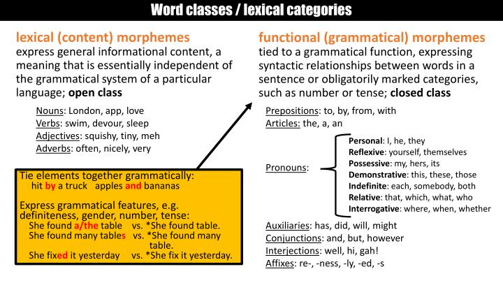 Word classes / lexical categories