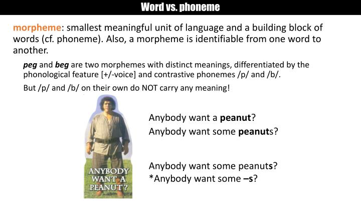 Word vs. phoneme