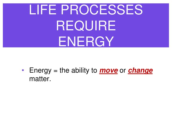Life processes require energy