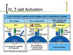 iv t cell activation