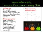 immuno fluorescence assay ifa2
