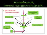 immuno fluorescence assay ifa4