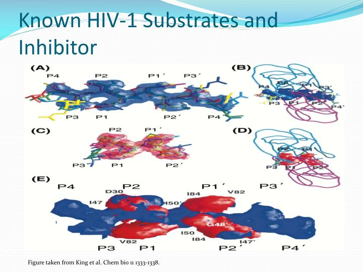Known HIV-1 Substrates and Inhibitor
