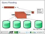query flooding