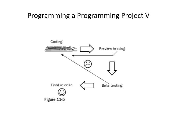 Programming a Programming Project V