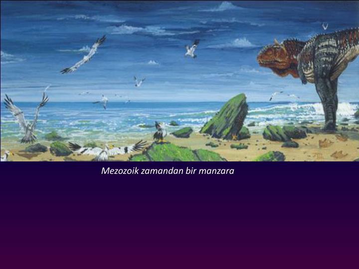 Mezozoik zamandan bir manzara
