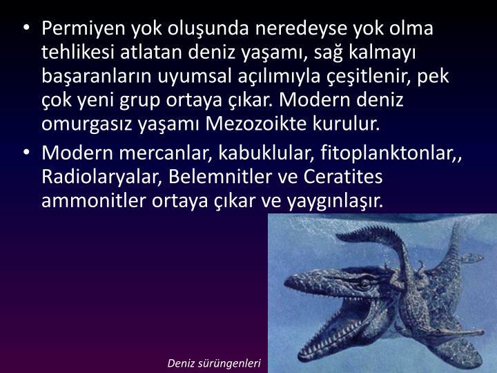 Permiyen yok oluşunda neredeyse yok olma tehlikesi atlatan deniz yaşamı, sağ kalmayı başaranların uyumsal açılımıyla çeşitlenir, pek çok yeni grup ortaya çıkar. Modern deniz omurgasız yaşamı Mezozoikte kurulur.