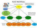 alice workflows